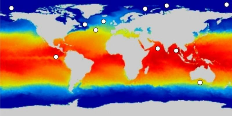 Example image generated by paleoceanography software